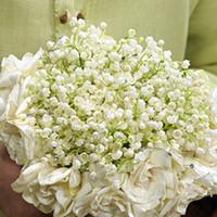 Flowers & Decor, white, Bride Bouquets, Flowers, Bouquet