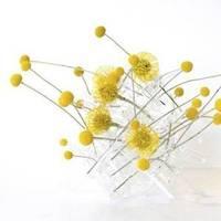 Flowers & Decor, yellow, Centerpieces, Modern, Flowers, Modern Wedding Flowers & Decor, Centerpiece