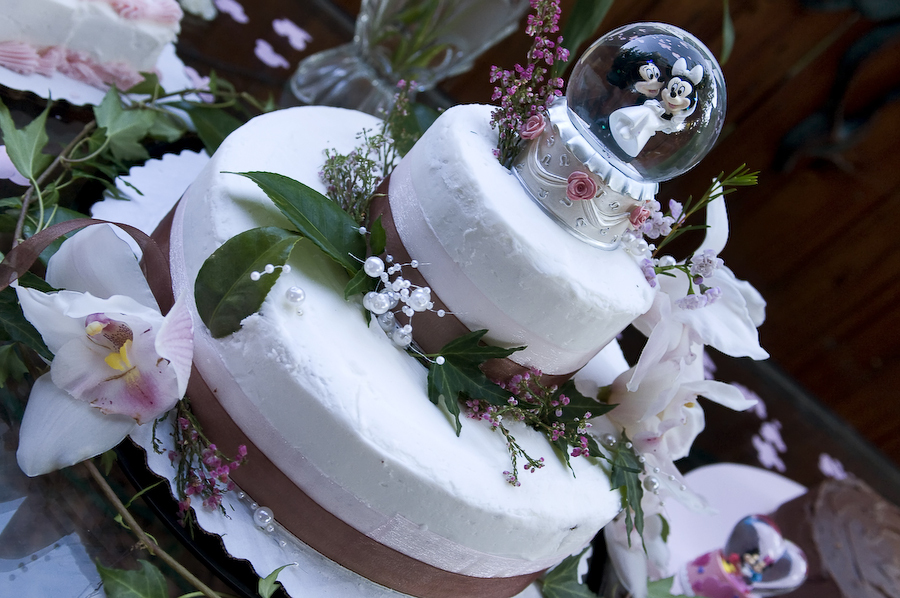 Flowers & Decor, Cakes, pink, brown, cake, Ribbon Wedding Cakes, Flowers, Ribbon