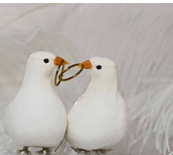 Cake topper, Birds, Bird