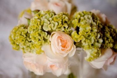 Flowers & Decor, white, pink, green, Flower, Bouquet