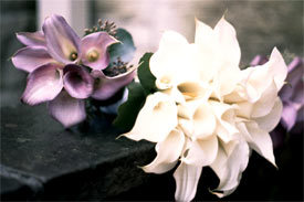 Flowers & Decor, white, purple, Bride Bouquets, Flowers, Bouquet, Groom, Calla, Lily