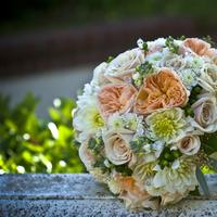 white, Roses, Bouquet, Bridal, Peach, Hydrangea, Flourish