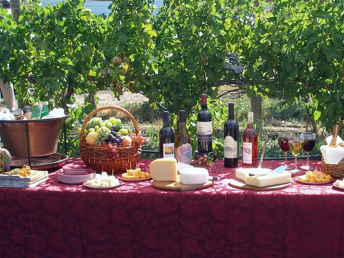 Wine, Vineyards, Colorado wine country inn
