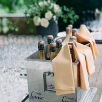 ivory, Wedding, Champagne, Ryan, Marriage, Jeri