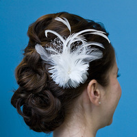 Beauty, Flowers & Decor, Jewelry, Veils, Fashion, Makeup, Headbands, Feathers, Accessories, Flower, Veil, Hair, Bridal, Hat, Birdcage, Headpiece, Headband, Fascinator, Clip, Accesories, Feather, Feather Wedding Dresses