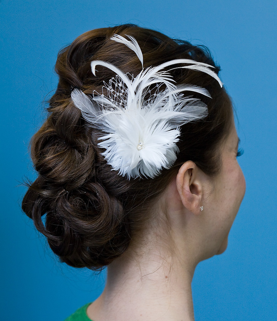 Hair, Makeup, Bridal, Flower, Veil, Jewelry, Accessories, Birdcage, Clip, Headband, Fascinator, Headpiece, Feather, Hat, Accesories, Beauty, Headbands, Feathers, Flowers & Decor, Fashion, Veils, Feather Wedding Dresses