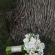 1375021477 small thumb eb572ee01f92d290e054ae089b06f01e