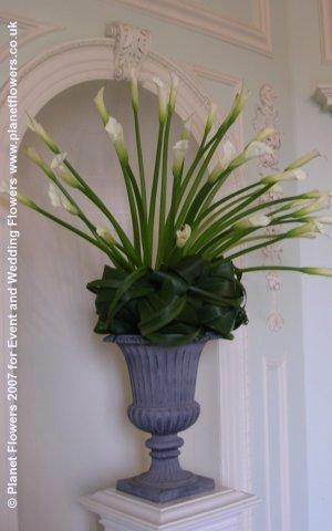Arrangement, Pedestal