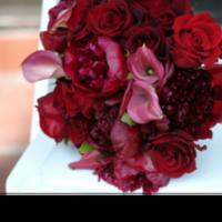 burgundy, Rose, Lily