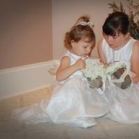 white, Flower girl, Hydrangea, Flower girl basket