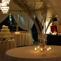 Reception, Flowers & Decor, Decor, white, black, Centerpieces, Centerpiece, Candle, Lounge, Chandelier, Light, Candlelight, Lamps