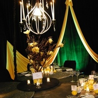 Reception, Flowers & Decor, Decor, yellow, black, Centerpieces, Lighting, Candles, Flowers, Centerpiece, Orchids, Tree, Cymbidium, Chandelier, Crystals, Tapers, Markei events productions