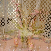 Registry, Place Settings, Plates, Wicker