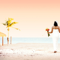 Destinations, Mexico, Wedding, In, San, Romance, Los, Baja, Lucas, Cabo, Based, Cabossignature, Weddingsweddings, Weddingssunset, Weddingsdream, Weddingsa, Weddingscabo, Cabosbaja