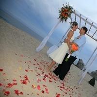 Destinations, Mexico, A baja romance wedding based in los cabos, Cabo san lucas weddings, Sunset weddings, Weddings in los cabos, Baja weddings, Cabo weddings, Signature weddings, Dream wedding, Los cabos weddings
