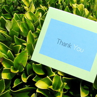 Stationery, Invitations, Letterpress, Lime paper expressions, Thank you note