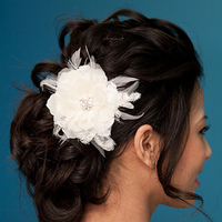 Beauty, Updo, Hairpin, Feathers, Comb