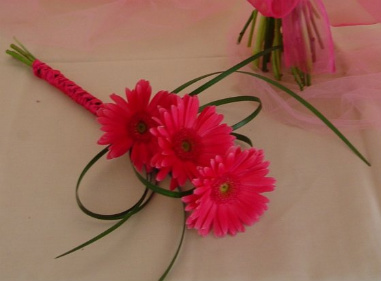 Flowers & Decor, Flowers, Gerbera