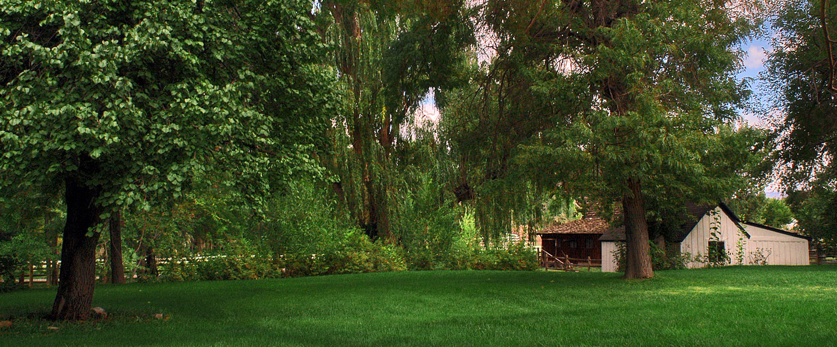 Weddings, Pond, Willow, Willow pond bed breakfast, Grounds