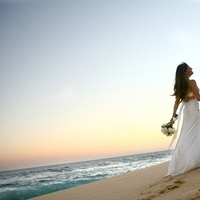 Wedding in los cabos mexico