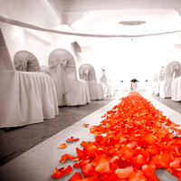 Ceremony, Flowers & Decor, Destinations, Real Weddings, Destination Weddings, Mexico, Flower girl, Sunset weddings, Baja weddings, Signature weddings, Weddings in mexico, Los cabos weddings, Wedding in los cabos, Cabo san lucas wedding