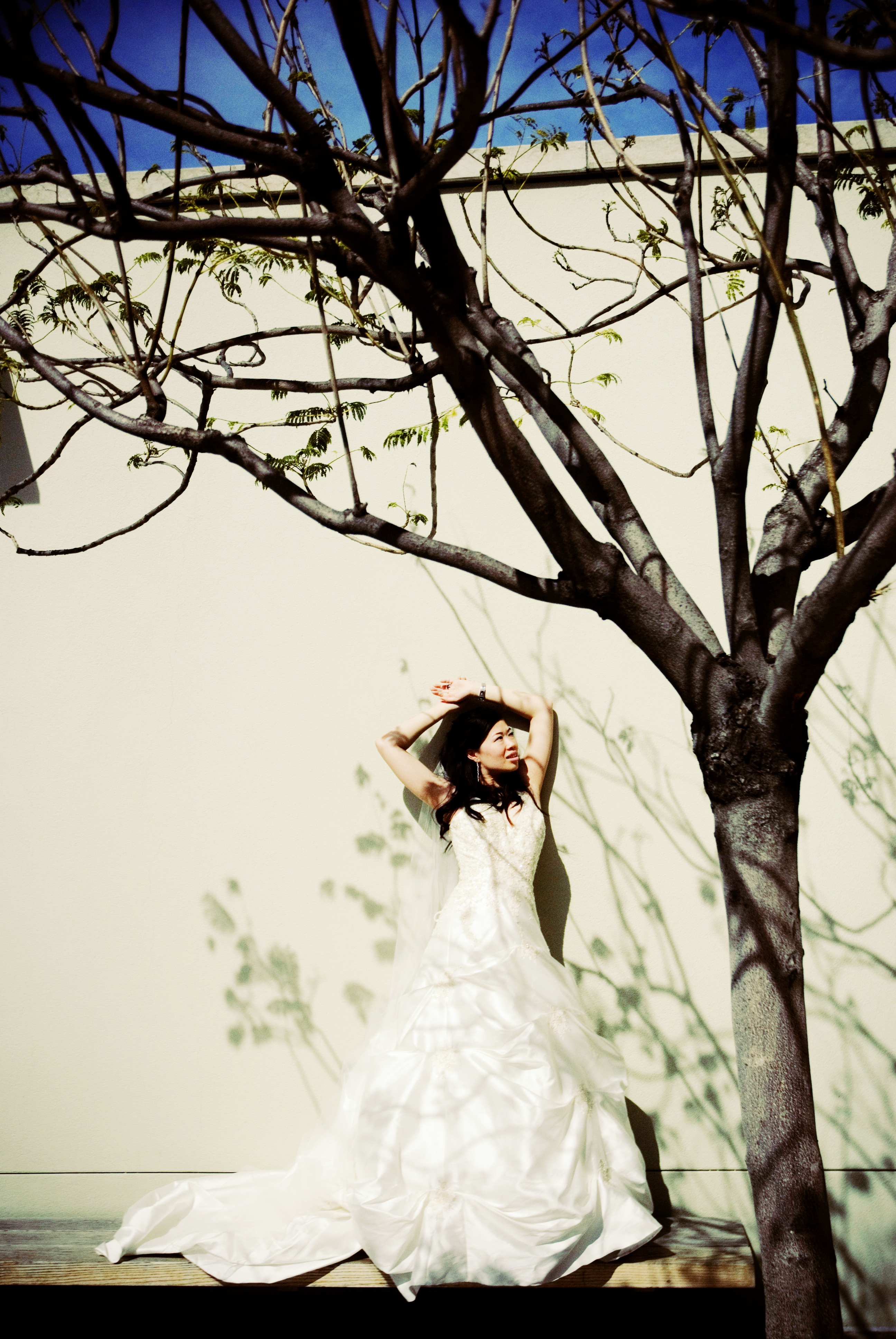 Wedding Dresses, Fashion, dress, The, Trash, Session