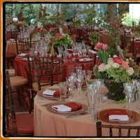Reception, Flowers & Decor, Centerpieces, Centerpiece, Wedding, Table, Floral, Chair, Color, Coral, Linen, Seating, Wood, An elegant occasion, Chavari