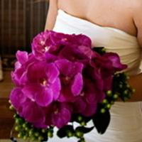 Flowers & Decor, purple, Bride Bouquets, Flowers, Bouquet
