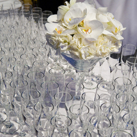 Registry, ivory, Drinkware, Champagne, Glasses