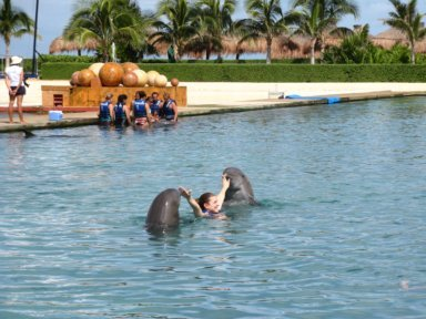 Destinations, Mexico, Cancun, All about honeymoons, Dreams, Dolphins