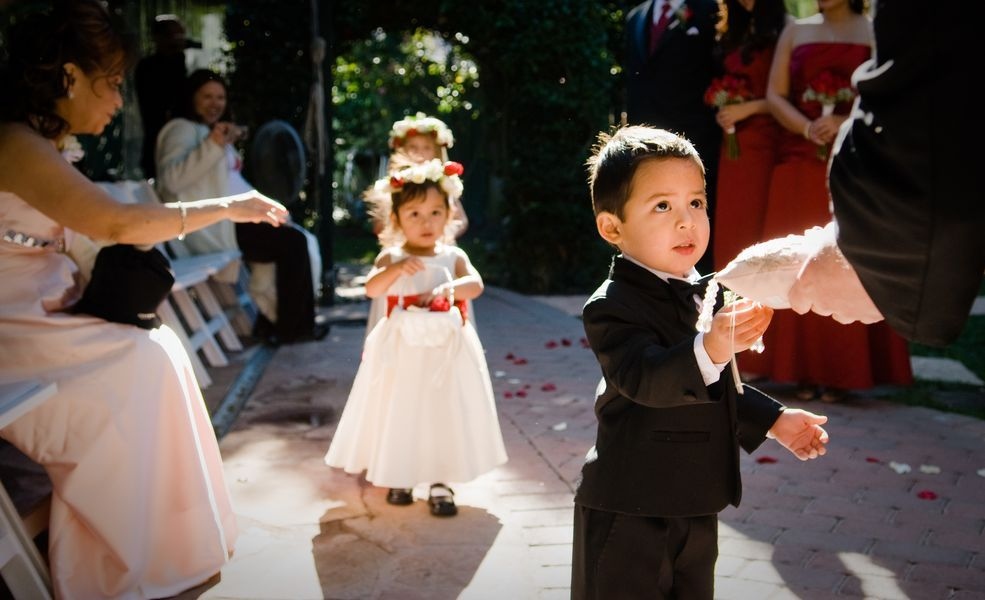 Fashion, Men's Formal Wear, Ring, Tuxedo, Bearer, Ringbearer, Boy, Young, Majestic moment wedding photography, Page boy