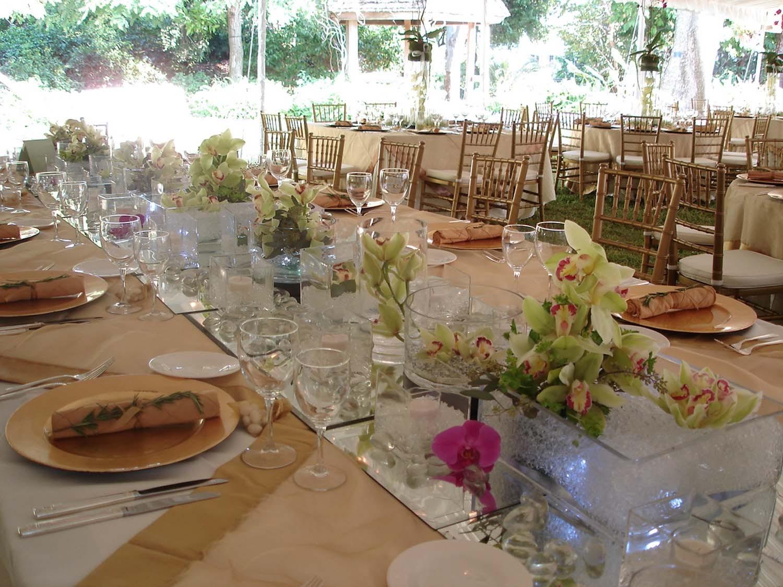 Reception, Flowers & Decor, Centerpieces, Flowers, Centerpiece, Orchids, Flowers by fudgie