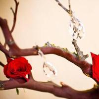 Reception, Flowers & Decor, Decor, red, Modern, Flowers, Modern Wedding Flowers & Decor, Wedding