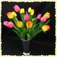 1375023391_small_thumb_1b9a22e11dc84e63200a64e4590e0610