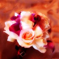 Flowers & Decor, ivory, Bride Bouquets, Flowers, Roses, Bouquet, Calla, Lilies, Bridal