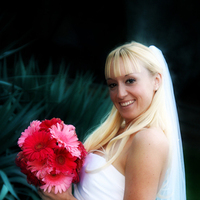 Flowers & Decor, pink, black, Bride Bouquets, Flowers, Bouquet, Daisy, Polk-a-dots, Dees petals