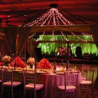 Reception, Flowers & Decor, Lighting, Dance, Band, Color, Floor, Stage, Wash, Led, Canopy