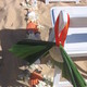 1375023424 small thumb 533d71c8d3800193c68584a6ad7602de