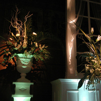 Reception, Flowers & Decor, Lighting, Floral, Color, Building, Wash, Environment, Architecture, Scenery, Column