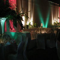 Reception, Flowers & Decor, Centerpieces, Lighting, Tables & Seating, Centerpiece, Color, Greenery, Tables, Wash, Uplight, Beam