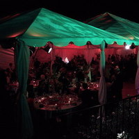 Reception, Flowers & Decor, Lighting, Outdoor, Theme, Gobo, Decorative, Pattern, Projection, Canopy, Exterior