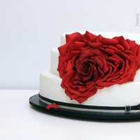 Cakes, red, black, cake, Rose