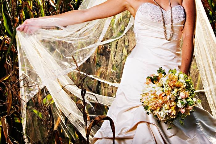 Flowers & Decor, Veils, Fashion, white, orange, Bride Bouquets, Bride, Flowers, Bouquet, Veil, Tulips, Sunlight, Studio diana, Parrot, Flower Wedding Dresses