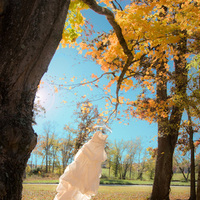 Wedding Dresses, Fashion, dress, Trees, Pavel studios photography