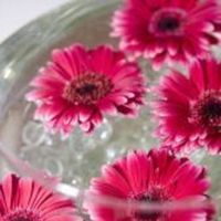 Flowers & Decor, Flowers, Gerber daisies, Pink petals event design, Gift table