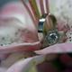 1375023857 small thumb f652d30b3a3649b7a7583b106b7694e4