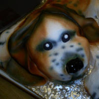 Birthday, Puppy, 3-d, Spectacular cakes