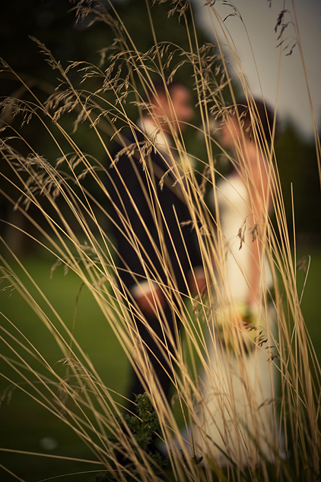 Bride, Groom, Focus, Wheat, Outside, Art, Jelani memory photography