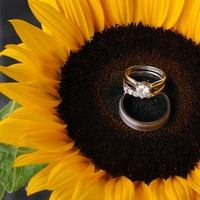 Reception, Flowers & Decor, Jewelry, yellow, gold, Flowers, Rings, Wedding, Sunflowers, Beautiful